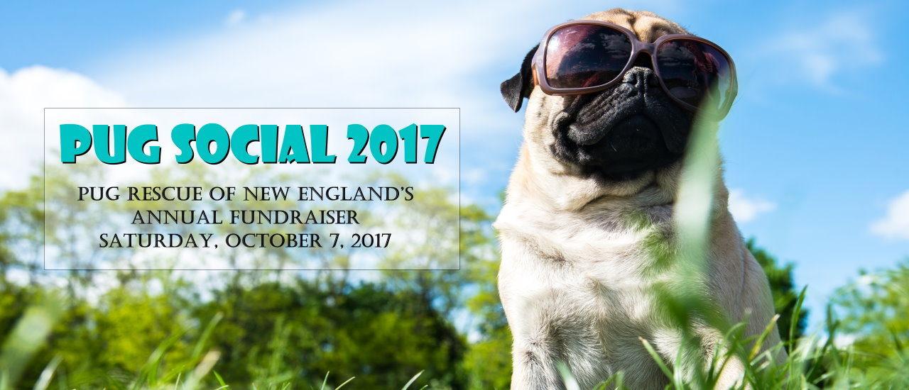 Pug Social 2017