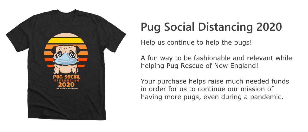 Pug Social Distancing 2020